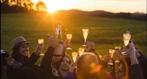 Festa da Colheita traz surpresas e segredos de Vinícola em Campo Largo