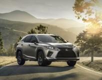 Luxuoso Crossover Lexus 2020 RXL